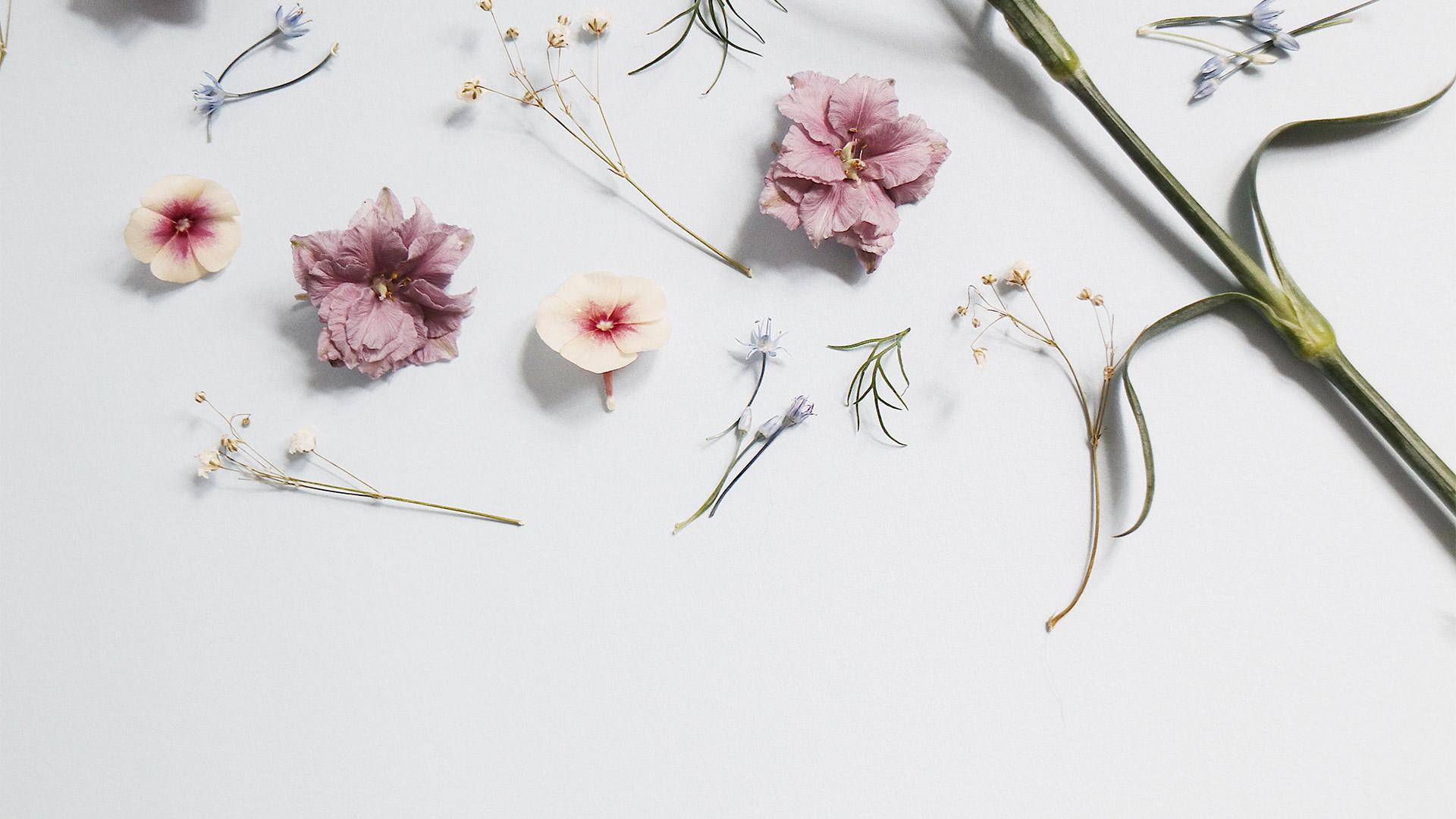 Gutscheine Blumen Emichs Hotel