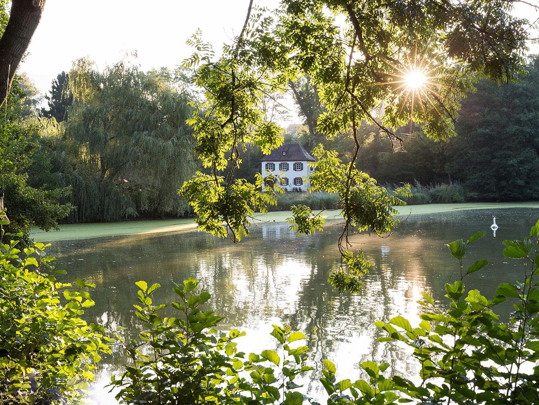 Morgensonne Seegarten Emichs